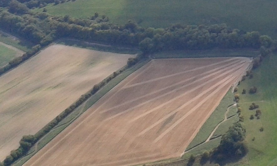 Whatever happened to crop circles?